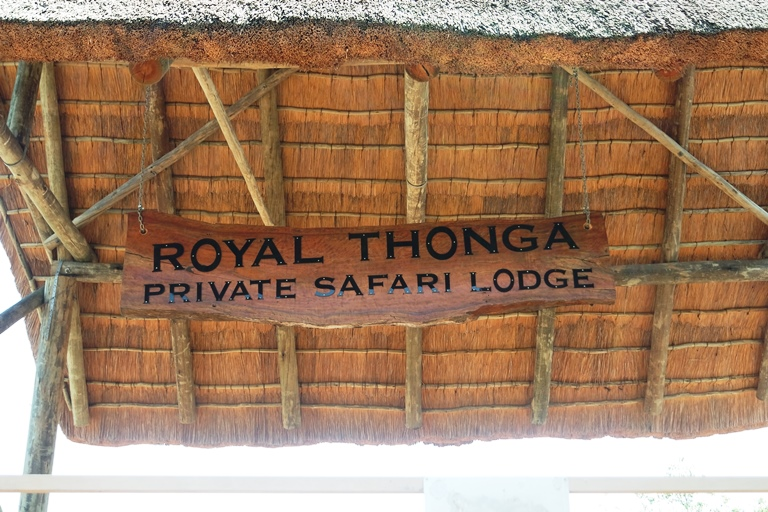 [Travel] My birthday weekend at Royal Thonga Safari Lodge