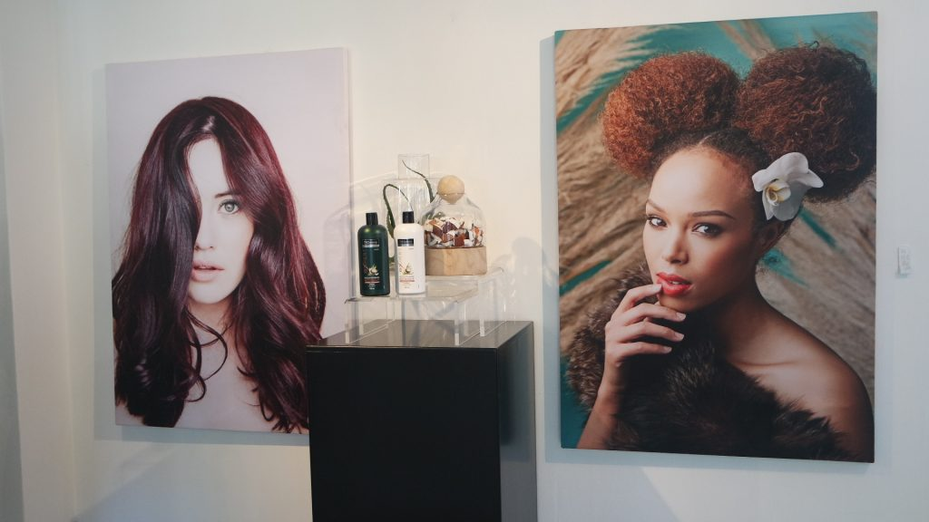 Tresemme Botanique Media Launch