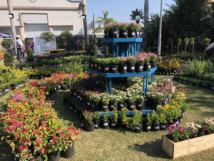 the house and garden show 2018