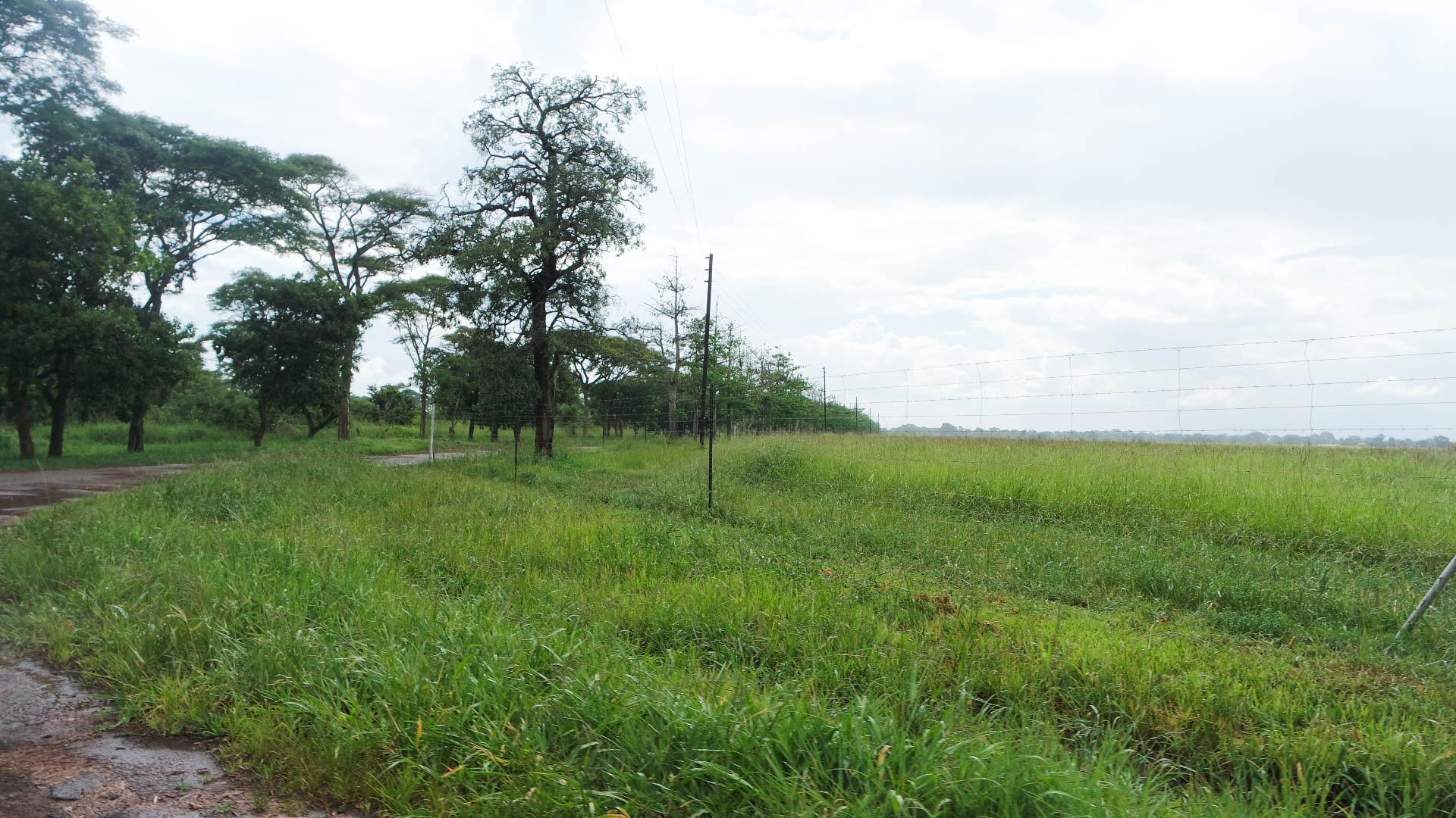 Lusaka Zambia