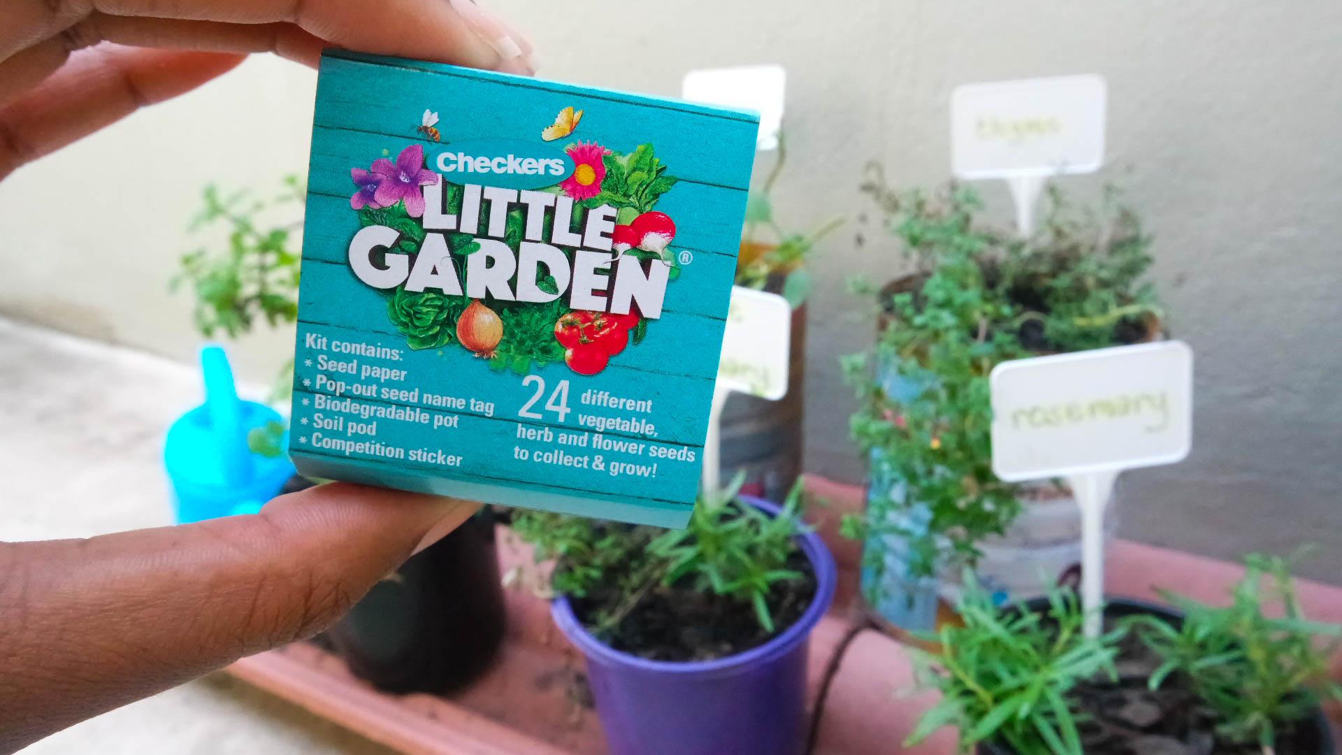 checkers little garden #checkerslittlegarden
