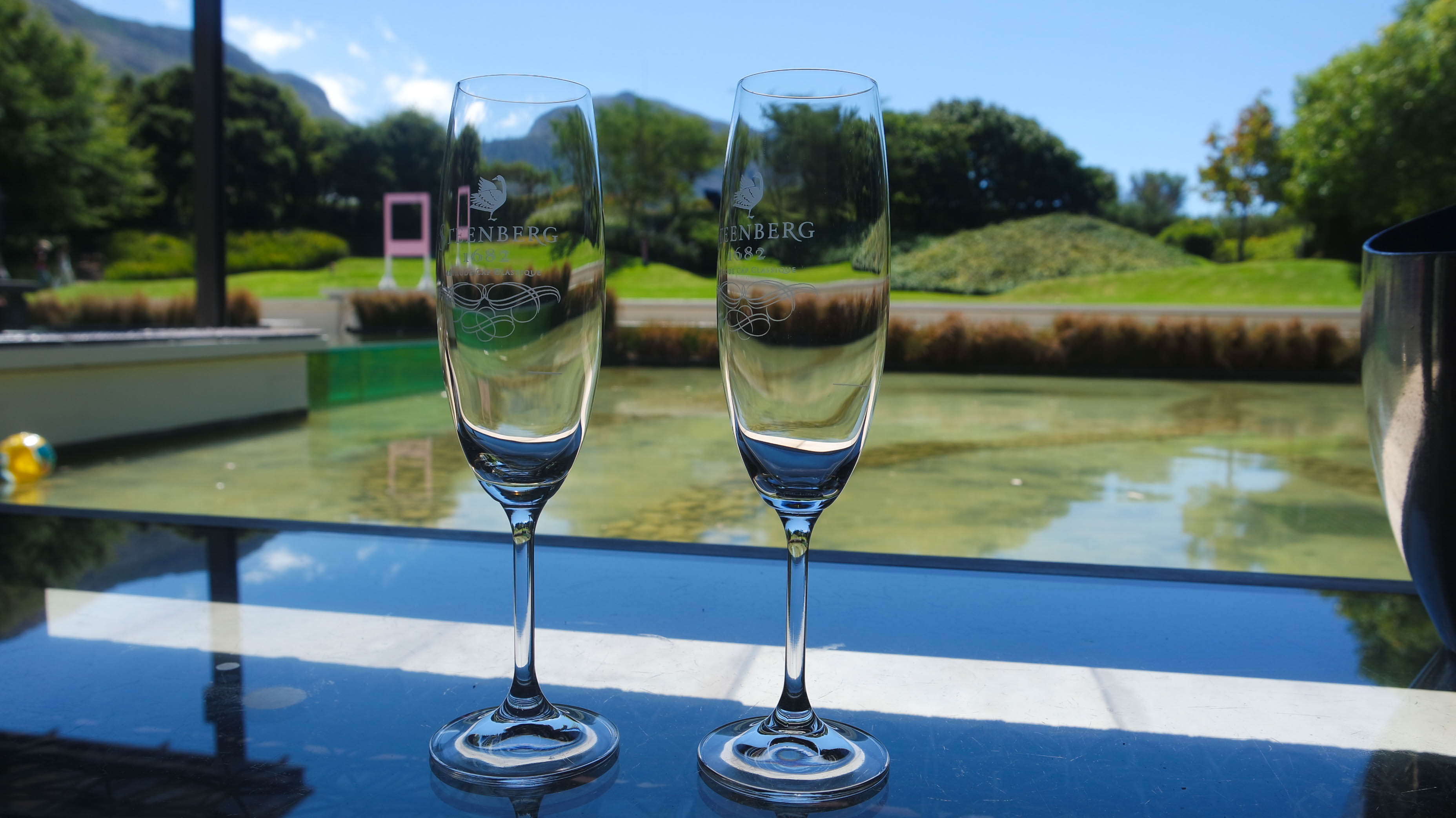 Steenberg wine farm